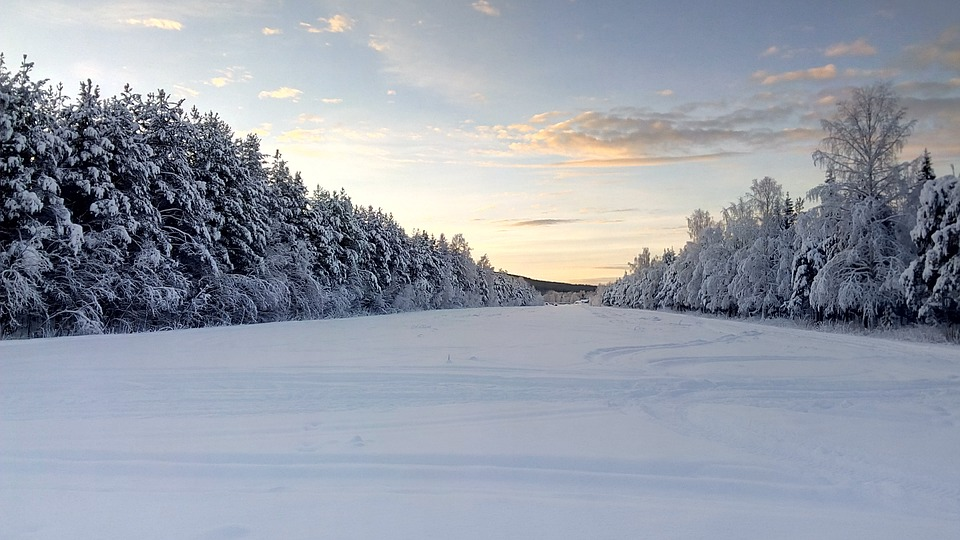 A snowy landscape in Lapland